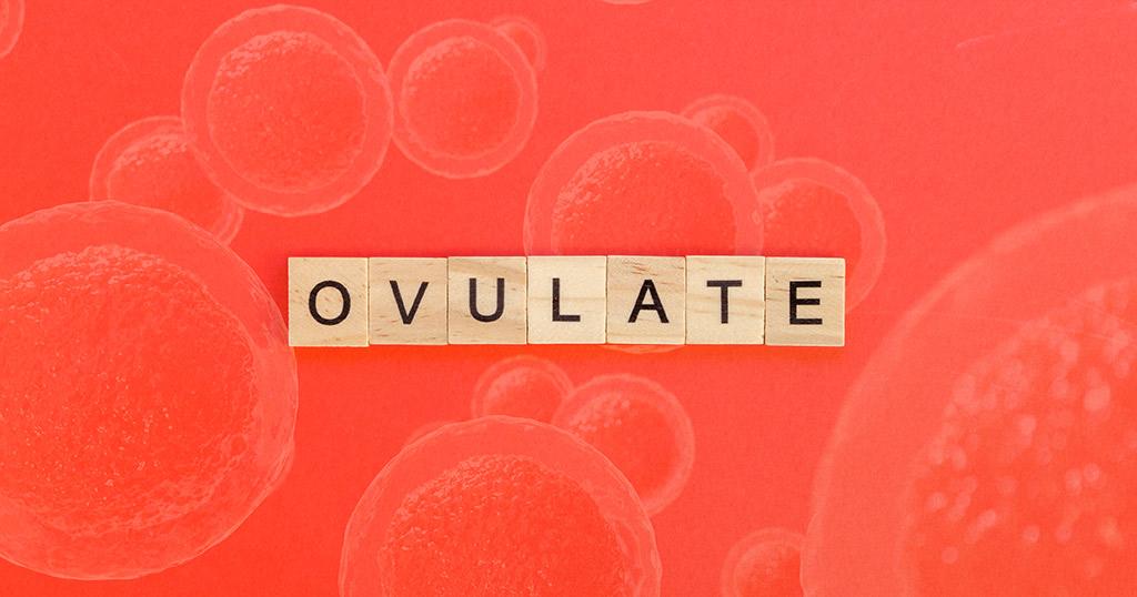 infisport-blog-como-influye-el-ciclo-menstrual-en-el-rendimiento