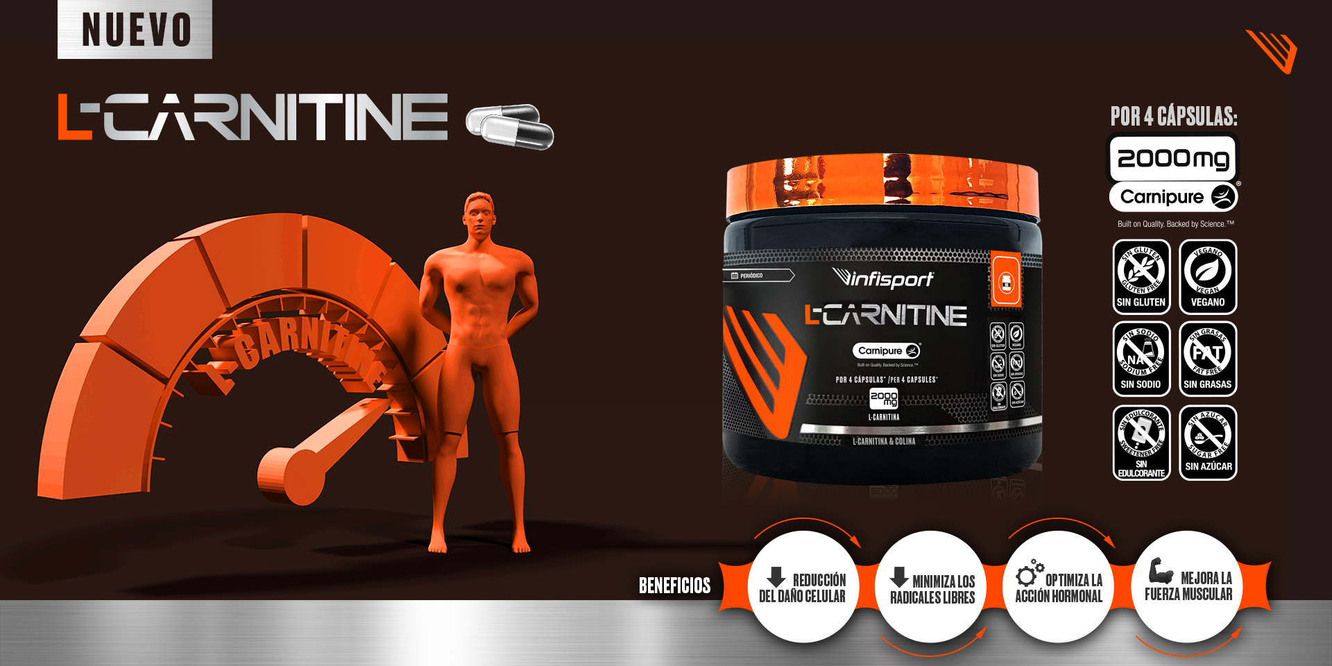 producto-suplementos-l-carnitine-capsulas